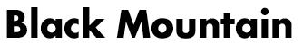 Black Mountain(USA)